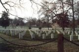 War Cemetery - Arlington